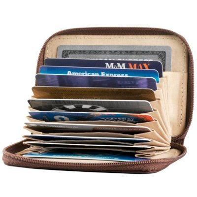 Accordian style card case