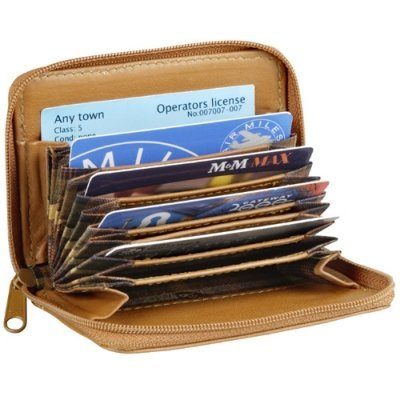 Accordian Style Card Holder